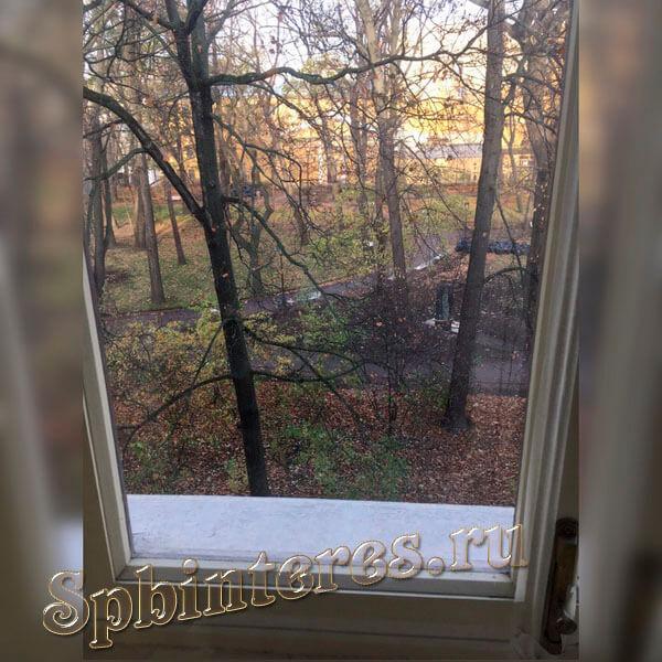Самое красивое в моей комнате это клен за окном