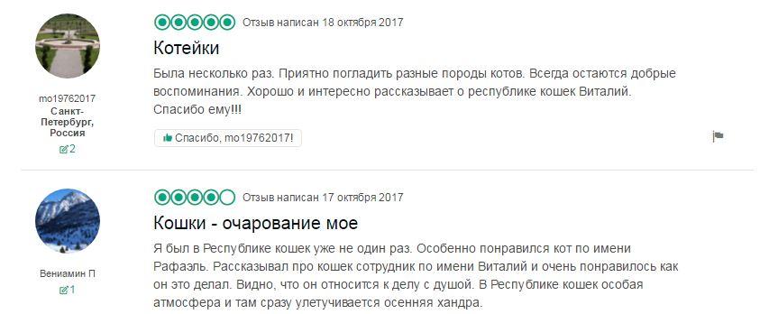 """Котокафе """"Республика кошек"""" отзывы"""