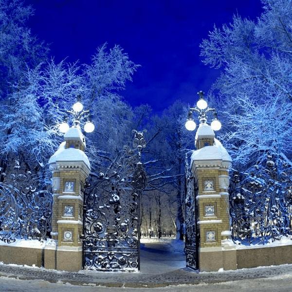 Летний сад зимой в санкт-петербурге