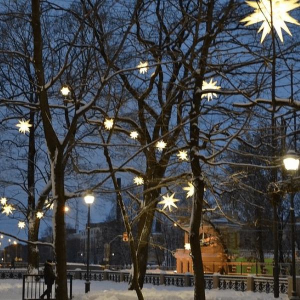 Рождественские звёзды над Новой Голландией