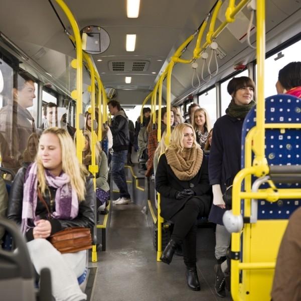 Как добраться из Санкт-Петербурга на автобусе в Петергоф?