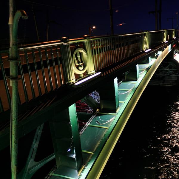 мост биржевой в санкт петербурге