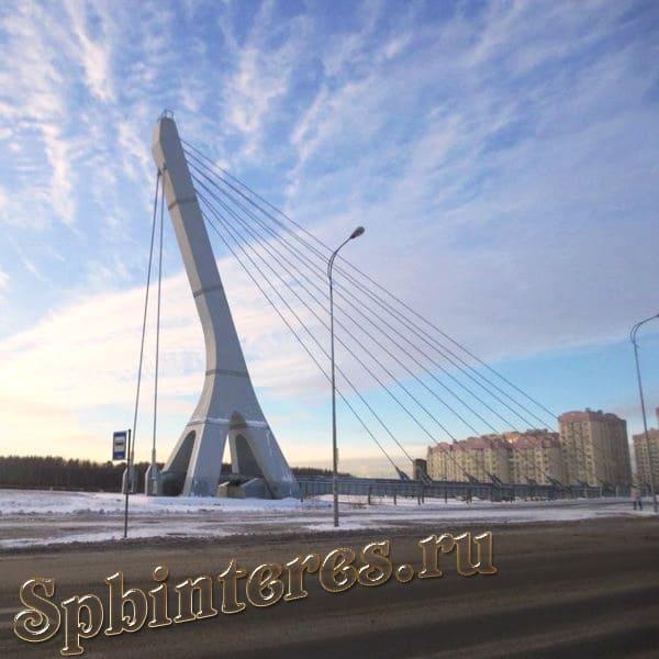 Мост Ахмата Кадырова в Петербурге - фото, описание
