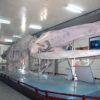 Океанографический музей и аквариум Нячанга