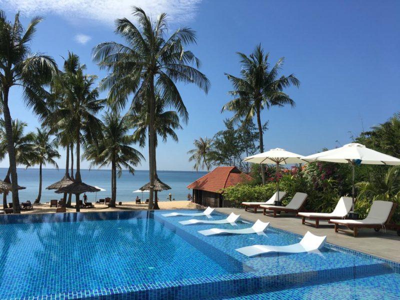 Пальма и бассейн