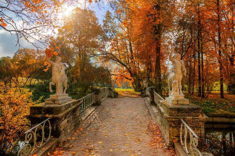 Парк в Петербурге