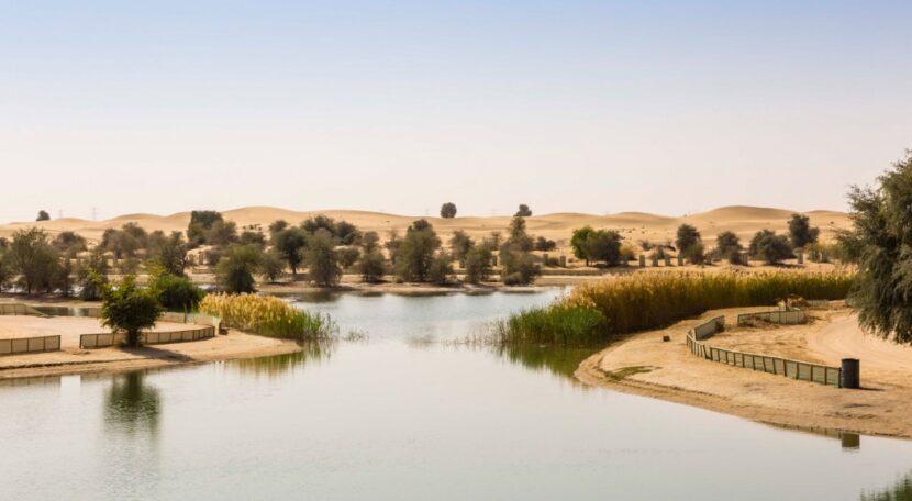 Al-Qudra Lake