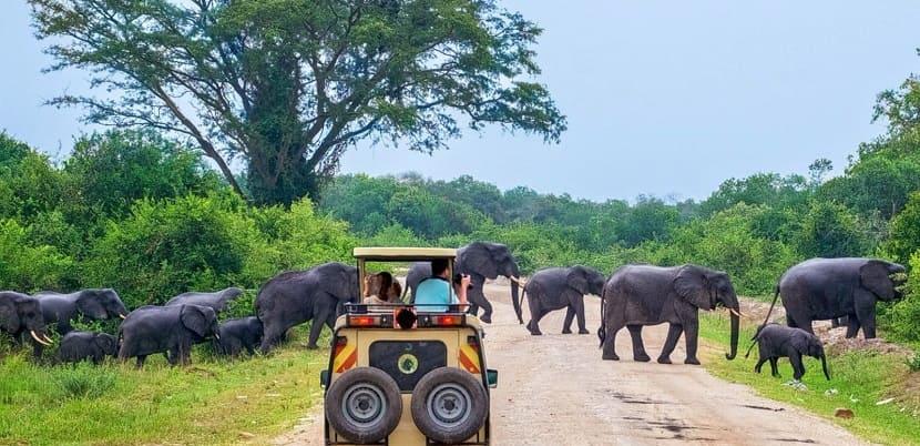 Yala National Park, Hambantota