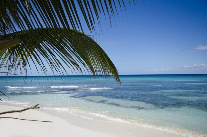 Остров Саона (Isla Saona)