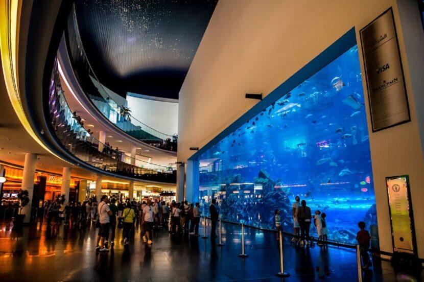аквариум и Дискавери-центр Dubai Mall