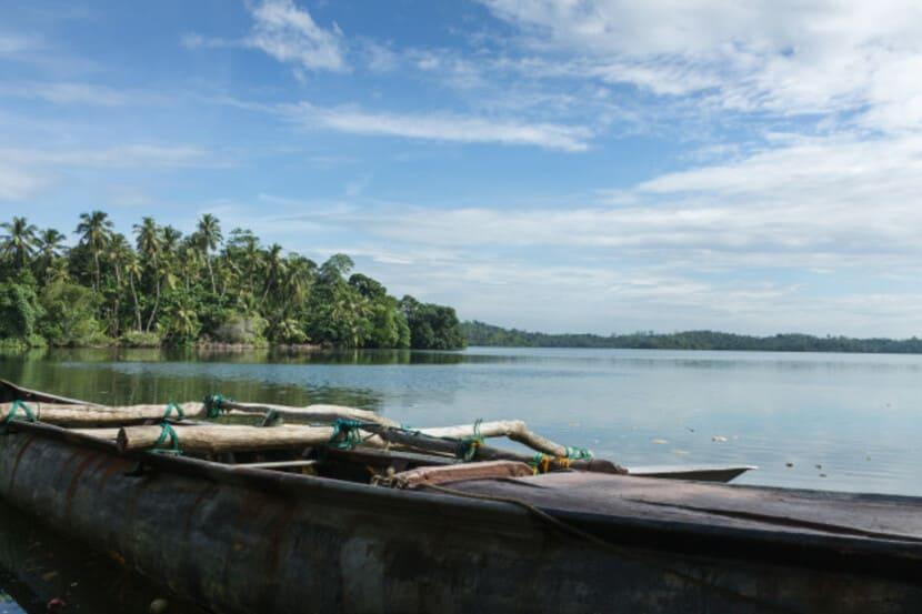 Утка гребет на лодке по озеру Бейра
