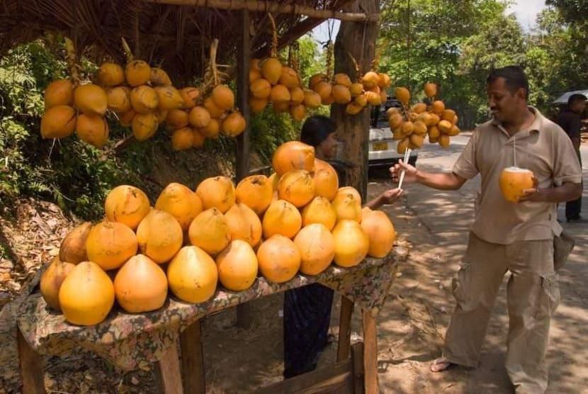 Выпей апельсиновый кокос, Коломбо