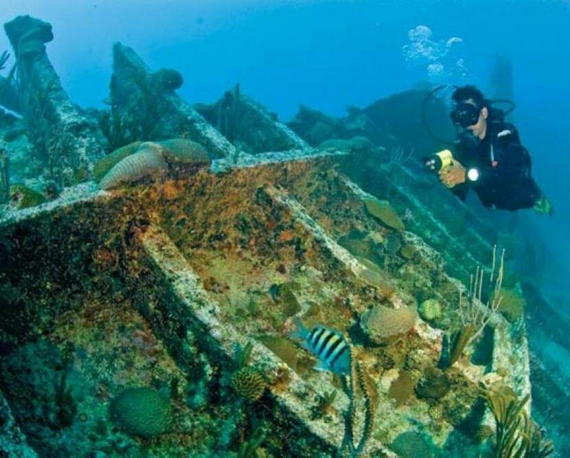 Подводное плавание в Хиккадуве