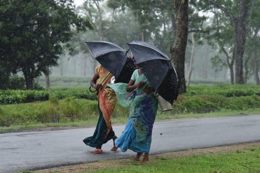 Влажная погода на Шри-Ланке