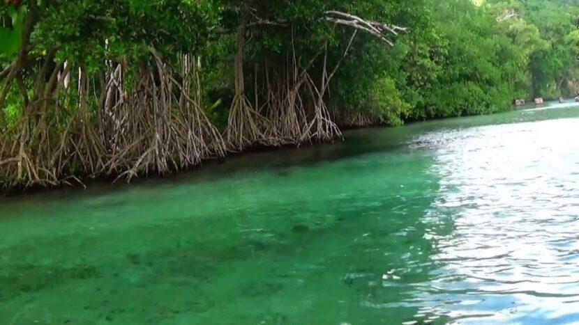Río Caño Frío