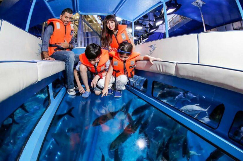 Прогулки на лодке со стеклянным дном