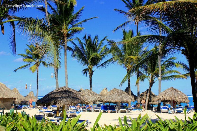 Доминикано