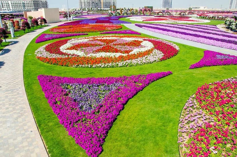 дубайский чудо сад