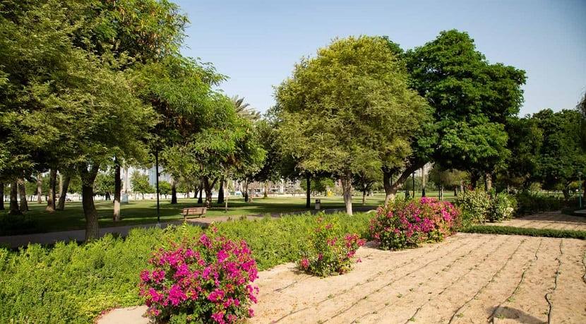 Сафа Парк