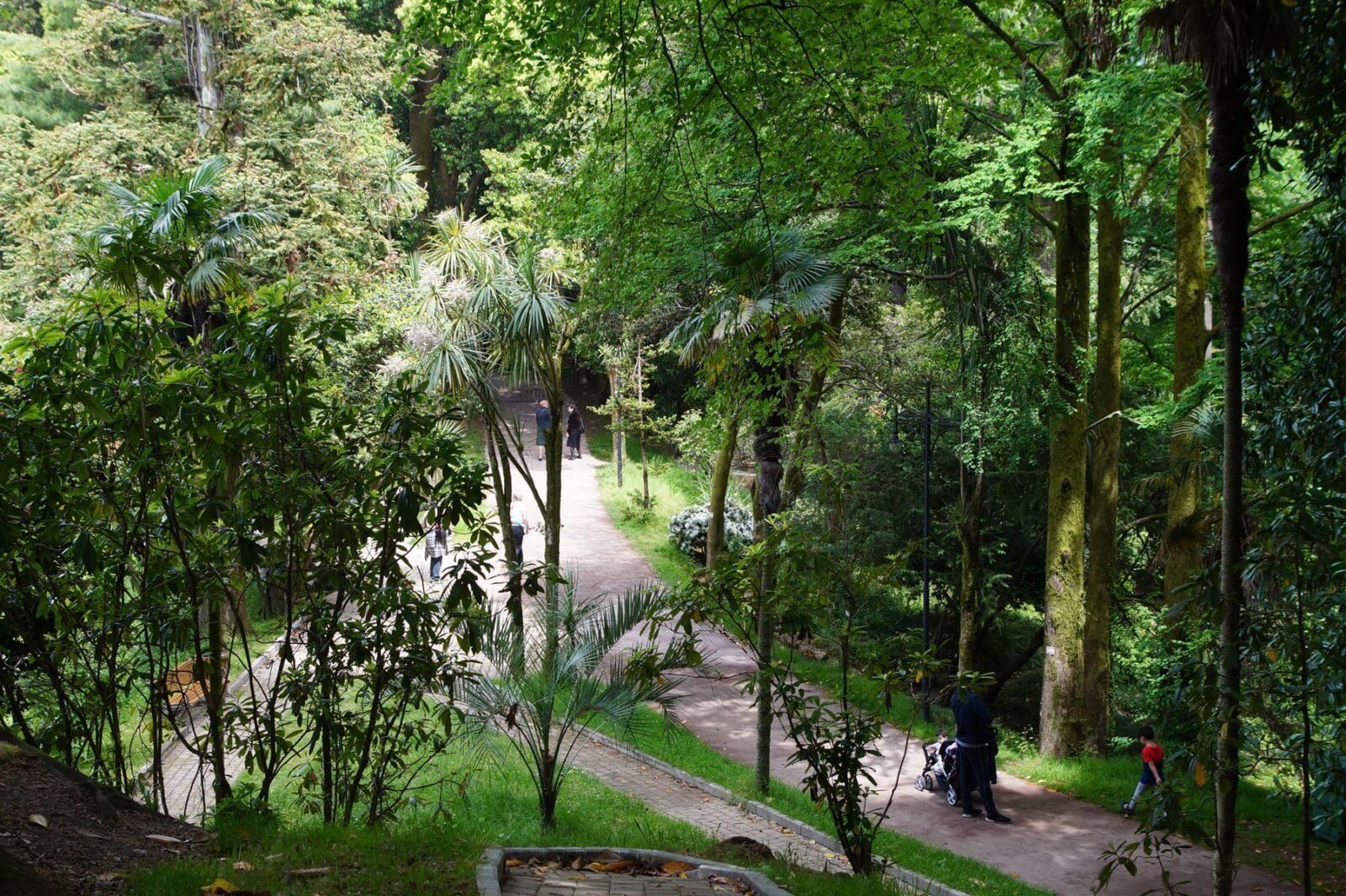 Батумский ботанический сада