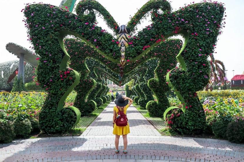Сад чудес в Дубае - где находится, как добраться, стоимость, фото