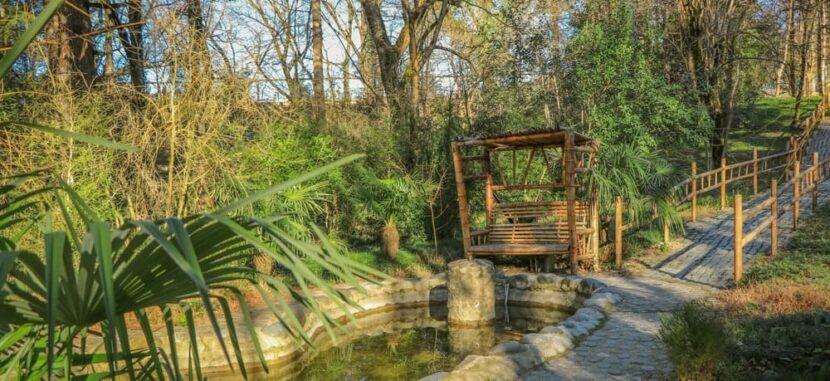 кутаисский ботанический сад