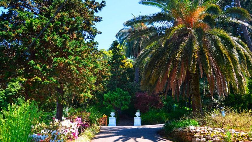 Батумский Ботанический сад - как добраться, цена, история, фото